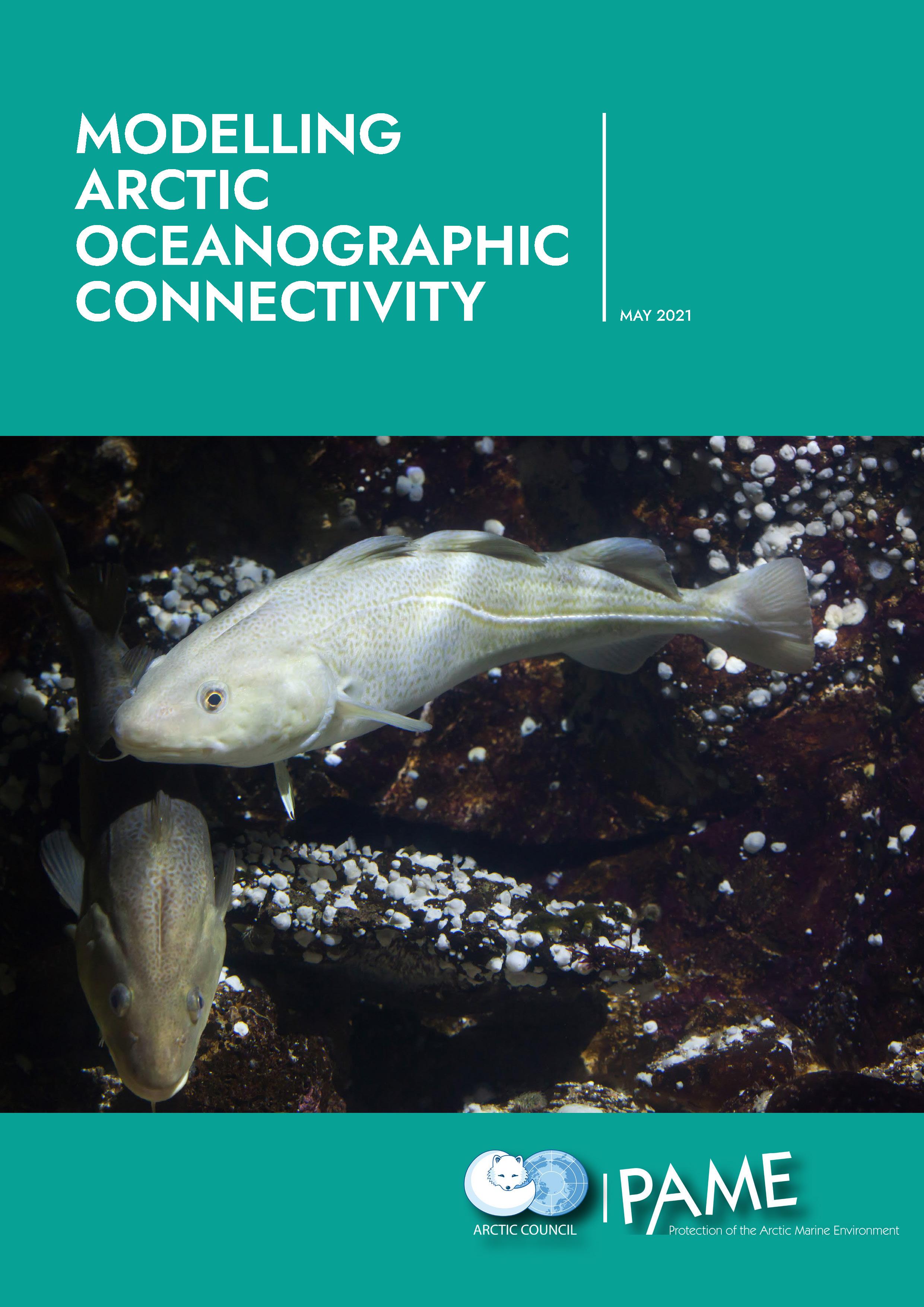 Modelling Arctic Oceanographic Connectivity