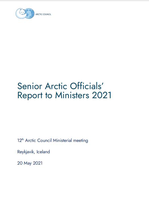 SAO Report 2021