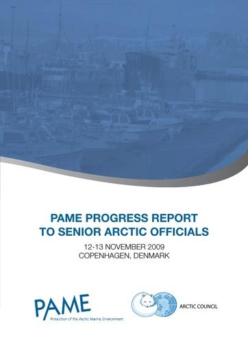 SAO Report 2009