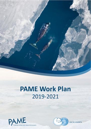 PAME Work Plan 2019-2021