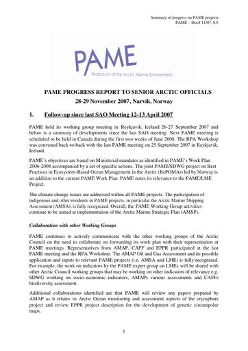 SAO Report 2007 (November)