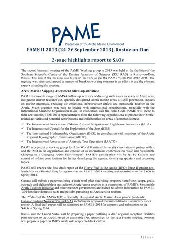 SAO Report 2013